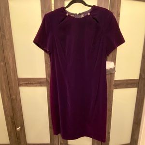 NWT Purple fancy holiday dress, size 14